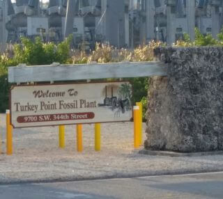 Turkey Point Fossil Plant