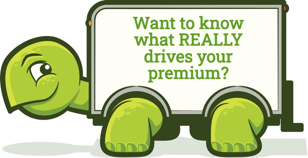 Trucker Turtle Want to Know What REALLY Drives Your Premium