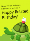 birthday turtle.png