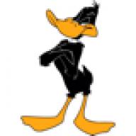 Daffyduck528